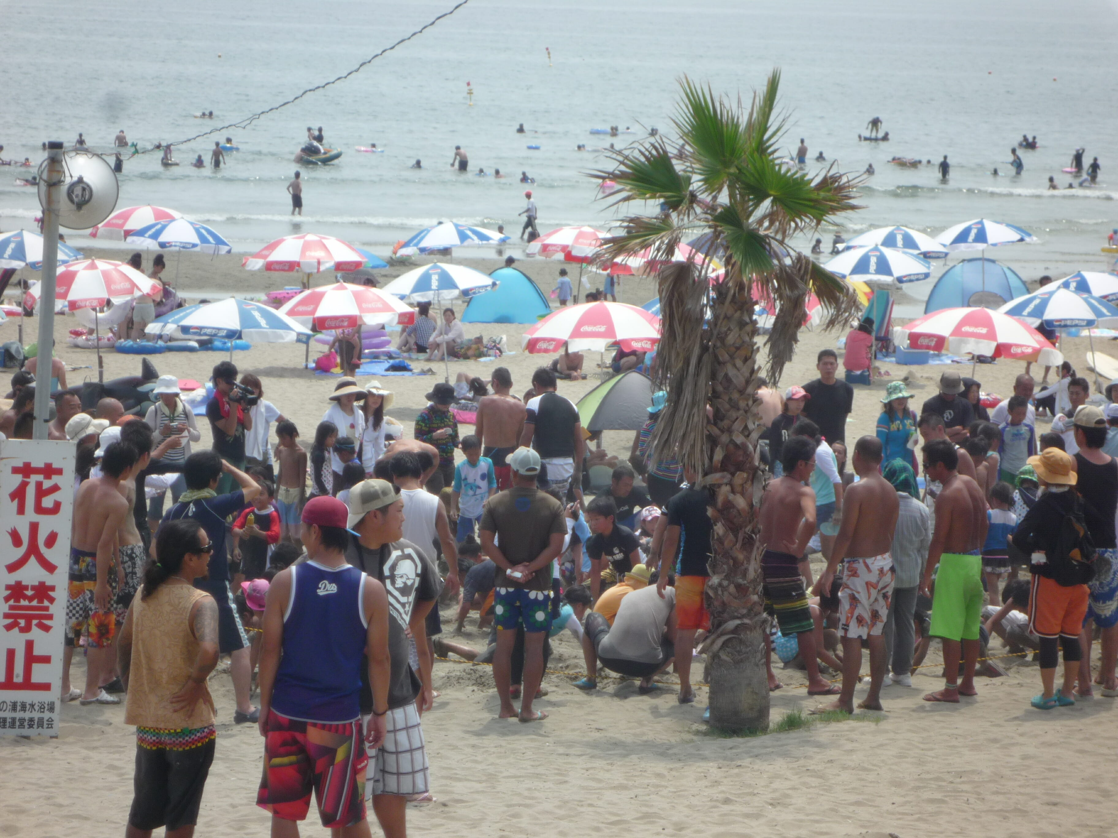 2013.8.4 夏だ!砂浜まつり