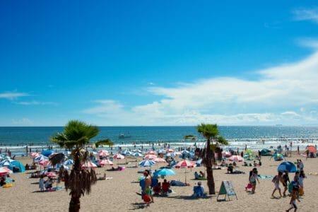 9月第一日曜日のビーチクリーンは中止させていただきます。
