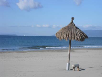 6月1日(月)から、全ての駐車場を開放しています。尚、Café Glück及びROYAL SURFスクールも開催しています。